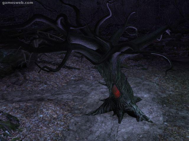 Blair Witch Project Screenshots Archiv - Screenshots - Bild 2