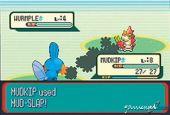 Pokémon Ruby / Sapphire  Archiv - Screenshots - Bild 4