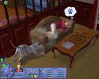 Sims Tiergeschichten  Archiv - Screenshots - Bild 3