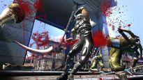 Ninja Gaiden 2  Archiv - Screenshots - Bild 3