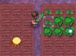Rune Factory: A Fantasy Harvest Moon - Screenshots - Bild 20