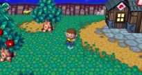 Animal Crossing: Let's Go to the City - Screenshots - Bild 19