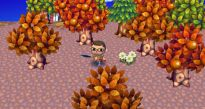 Animal Crossing: Let's Go to the City - Screenshots - Bild 29