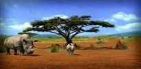 Afrika - Screenshots - Bild 2