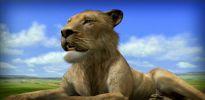 Afrika - Screenshots - Bild 7