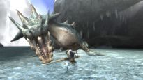 Monster Hunter 3 - Screenshots - Bild 20