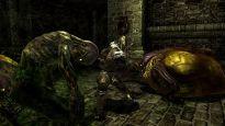 Divinity II: Flames of Vengeance - Screenshots - Bild 5