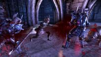 Dragon Age: Origins - DLC: Hexenjagd - Screenshots - Bild 2