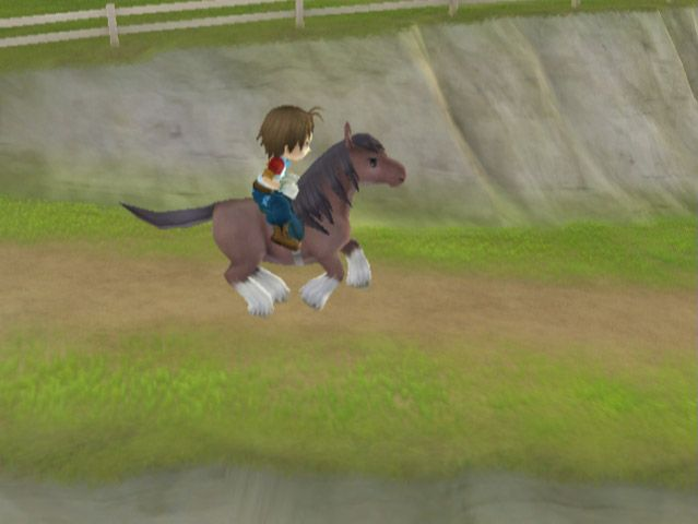 Harvest Moon: Deine Tierparade - Screenshots - Bild 30