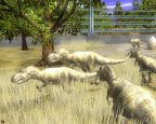 Wildlife Park 2: Dino World - Screenshots - Bild 8