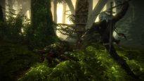 The Witcher 2: Assassins of Kings Enhanced Edition - Screenshots - Bild 14
