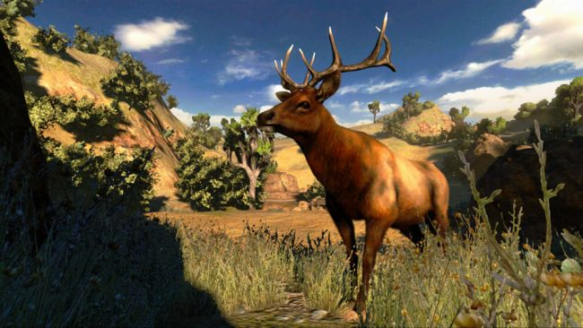 Cabela's Hunting Expeditions - Screenshots - Bild 1