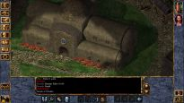 Baldur's Gate: Enhanced Edition - Screenshots - Bild 4