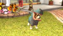 PlayStation Vita Pets - Screenshots - Bild 9