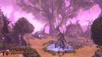 Neverwinter Fury of the Feywild - Screenshots - Bild 2