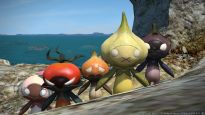 Final Fantasy XIV: A Realm Reborn - Screenshots - Bild 2