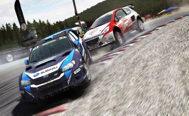 DiRT Rally - Screenshots - Bild 9