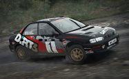 DiRT Rally - Screenshots - Bild 6
