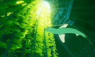 ABZÛ - Screenshots - Bild 7