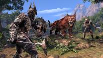 The Elder Scrolls Online: Elsweyr - Screenshots - Bild 8
