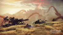 Horizon: Forbidden West - Screenshots - Bild 4
