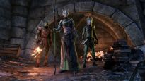 The Elder Scrolls Online - Screenshots - Bild 8