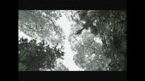 Monster Hunter Freedom 2 - Trailer